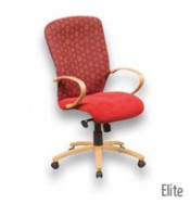 managerial_elite_highback